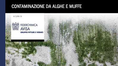 Contaminazione da alghe e muffe