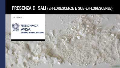 Presenza di sali (efflorescenze e sub efflorescenze)